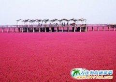 盘锦红海滩,昆仑温泉